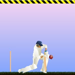 Image Cricket Game