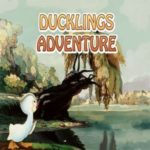 Ducklings Adventure