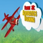 Flight 3D Aerobatics Training