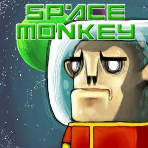 Image Space Monkey