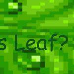 Is Leaf?