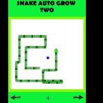 Snake Auto Grow 2