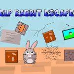 Help Rabbit Escape