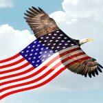 U.S Flag Evolution